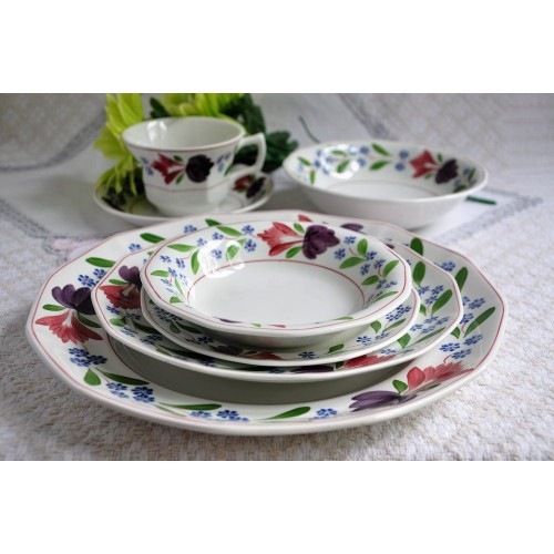 Adams Old Colonial Ironstone Micratex Dinner Set