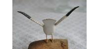 Goéland sculpté à la main en Nouvelle-Écosse
