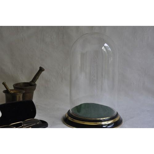 Dôme de verre décoratif sur socle