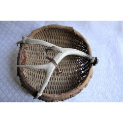 Native Style Basket With Deer Antler and Rawhide