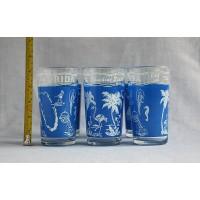 6 verres à eau souvenirs Florida The Sunshine State