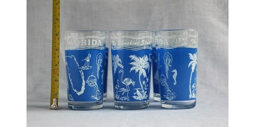 6 verres à eau souvenirs Florida The Sunshine State
